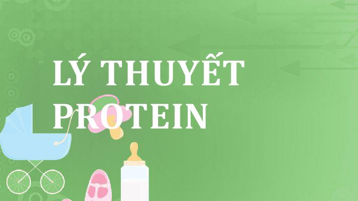 ly-thuyet-protein